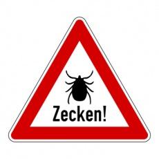 Zeckenstich - Wie weiter?