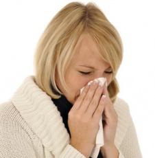 Hausstauballergie: Wenn Milben zum Problem werden