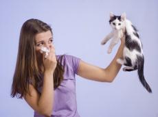 Dieser Parasit befällt fast jeden: Symptome, Verlauf, Komplikationen & Therapie der Toxoplasmose