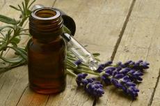Traditionelle Europäische Medizin: Heilkunde aus dem Mittelalter