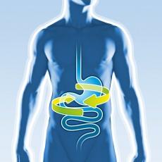 Richtig Fasten: Vorbereitung, Darmreinigung & Co. - Gesundheit und Lebenskraft durch Nahrungsverzicht