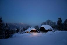 Winter ohne Blues - so kommen Sie gut durch die trübe Jahreszeit!
