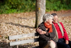 Nieren- und Harnwegssteine Ursachen